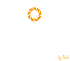 Flying Impressions Logo